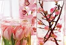 Table centerpieces, floral arrangements