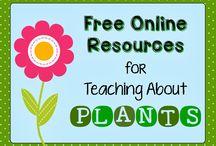 AGED Plants