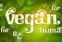 Vegan Banners