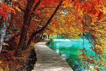 Inspiring fall photos