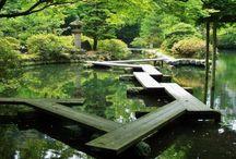 Japan / Want daar ga ik heen