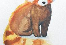 Red Pandas ❤️