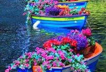 Boat gardens