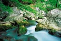 Ambiente e Natura