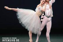 2015 - Panamá - Programa de Verano Intensivo de Ballet / Queremos anunciar que tenemos la fecha para nuestro Programa de Verano Intensivo de Ballet en Panama. Del 5 de Enero al 16 de Enero 2015. Para mas informacion puede comunicarse a julia@irinamaximballet.com o al 269-0064.   | #BALLET #BALLERINA #DANCERS #IrinaDvorovenko #MaximBeloserkovsky #IrinaMaximPTY #PANAMA