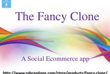 The Fancy clone