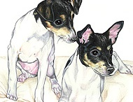 Rat Terriers / by Traci Vasen