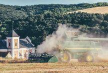 Tradiční, eko zemědělství