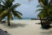 Malediven - Coco Bodu Hithi / Schöne Sandstrände, exklusive Ausstattung und beste Tauchmöglichkeiten bietet das Coco Bodu Hithi im Nord Male Atoll.