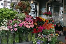 Flowers and shops