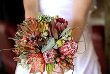 Wedding / Our beautiful wedding 16/03/2014