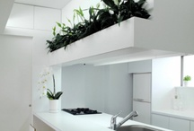Indoor planting - innercourtyard