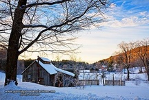 I love New England / by Siobhan Rose