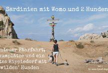 Wohnmobil und Hund / Mit dem Wohnmobil und Hund reisen.