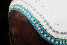 Korvahuppu till hästar