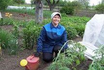 îngrijirea grădinii