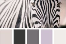 Colors / Uyumlu renkler, sunum pafta renkleri