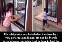 Faith in humanity