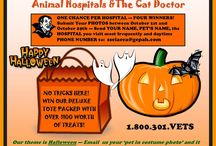 HALLOWEEN COSTUME PARTY 2014 / SUBMIT YOUR PET'S PHOTO TO SSCIACCA@GCPAH.COM WITH YOUR NAME, PET'S NAME, AND PHONE NUMBER, WHICH HOSPITAL YOU BRING YOUR PET!