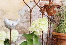 ogród -dekoracje