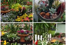 Freehold / by Brock Farms Garden World
