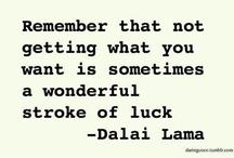 Quotes - D Lama