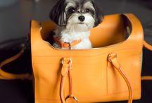handbagforlady / women designer handbag