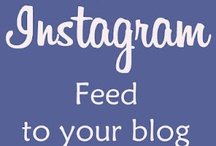 Blog Tips / by Heather Transue