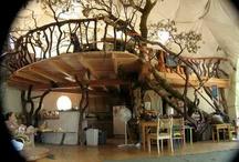 přírodní domy / přírodní domy