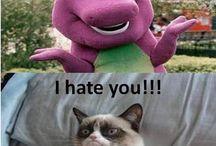 Grumpy Cat / Famous Grumpy Cat / by Jason SMC