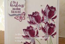 SU - Lotus Blossom