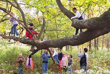 Outdoor Environments and Nature Activities