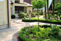 Ogród leśny - Woodland shade garden