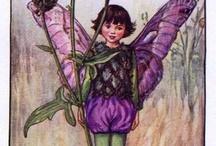 Fairy Dreams!