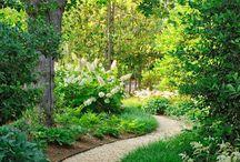 ogród - nawierzchnie