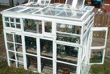 Greenhouse design / by Devon Burkhalter