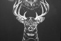 Illustration / by Tognac Dekline