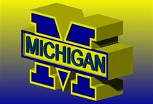 All things Michigan!!! GO BLUE!!! / by Alicia Donaldson