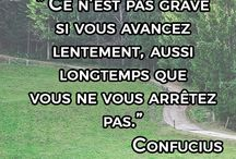 citations motivation