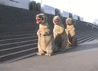 Funny GIFs