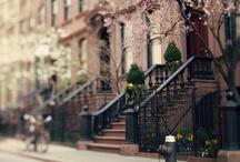 New York, New York / Everything on the Big Apple