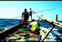 Охота на китов. Опасная и увлекательная рыбалка.