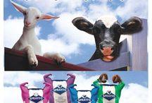 Sprayfo, Buzağı, Kuzu ve Oğlak Mamaları / Sprayfo, 1958 yılından beri buzağı mamaları üreten ve ürünleri dünya çapında 60 ülkeye yollayan bir kuruluştur.  Türkiye Yetkili Distribütörü Demsa Genetik'tir.