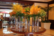 Hotel Flower Arrangements / Stunning flower arrangements at luxury hotels across the globe featuring orchids, hydrangeas, roses, tropical flowers and much more. / by Katie   lajollamom.com