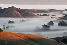 Petaluma, California