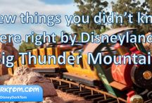 Disneyland Planning Tips / Dedicated to making your trip to #Disneyland efficient, fun, and magical.