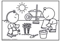 Groep 1-2 groeien en bloeien