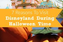 Theme Park Crazy! / All the best pins on making the best of your theme park experience!