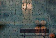 Lluvia: la belleza de la lluvia. Después de llover, todo vuelve a nacer.