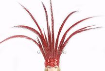 Open Face Pheasant Feathers Headdress With Sequins
